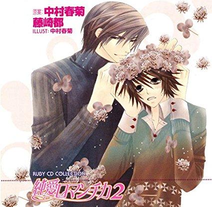 純愛ロマンチカ 2