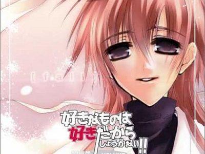 好きなものは好きだからしょうがない!!+White Flower+TRUTH【fall】